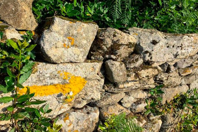Las flechas amarillas son último símbolo que se ha sumado al imaginario colectivo de los símbolos del peregrino.